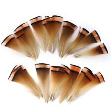 """50 Beautiful Natural Pheasant Golden Feathers 2""""-3"""" For Crafts Millinery DIY"""