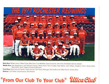 1977 ROCHESTER RED WINGS TEAM 8X10  PHOTO BASEBALL NEW YORK CROWLEY BOYER