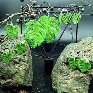 Plant Earrings Botanical earrings Leaf Earring Monstera leaf Earrings Jewelry