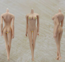 FREE SHIPPING JIAOU DOLL 1/6 Scale Female Body Mid/BL  Breast Version 3.0 NoHead