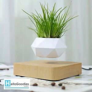 Contemporary Home Decor Floating Plant Pot White Planter With Natural Wood Base