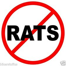 NO RATS (LOT OF 3) STICKER HARD HAT STICKER HELMET STICKER TOOLBOX STICKER