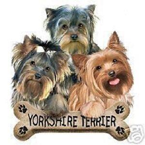 Yorkshire Terriers Dog  Sweatshirt    Sizes/Colors