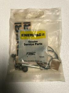 ENERPAC P391K2 REPAIR KIT FOR P391 HYDRAULIC HAND PUMP 700 BAR/10,000 PSI