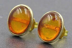 Amber Womens Stud Earrings & 9ct Yellow Gold Fine Jewelry Pierced Ears