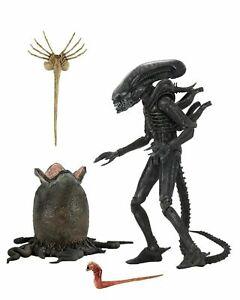 "Alien - 7"" Scale Action Figure - Ultimate 40th Anniversary Big Chap"