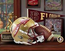 FSU Seminoles football print by Greg Gamble