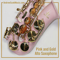 Barbie Pink Alto Saxophone - New in Case - Masterpiece