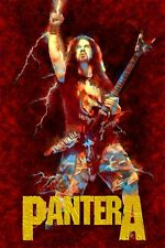 "Dimebag Pantera Poster Art Large 20x30 ""Cowboys From Hell"" Print Free Shipping!"