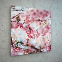 Wall Art Glass Print Canvas New Picture Large Blossom Cherry Oil p112141 50x50cm