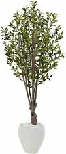 NEW IN BOX! Nearly Natural 5' Olive Silk Tree White Oval Planter Looks Real