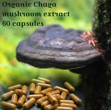 NATURAL MOOD ENHANCER Certified ORGANIC CHAGA mushroom extract (60 capsules)