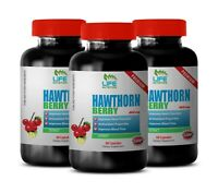hawthorn berry powder - Hawthorn Berry Extract 665mg - boosts immune system 3B
