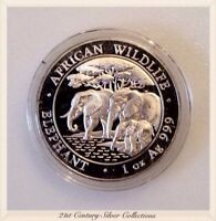 Mirrored Surface 2013 1 Oz Silver Somali African Elephant Semi Proof Coin