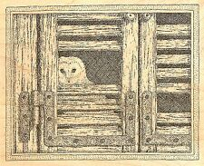 OWL PEEKING OUT OF BARN Wood Mounted Rubber Stamp IMPRESSION OBSESSION G2511 NEW