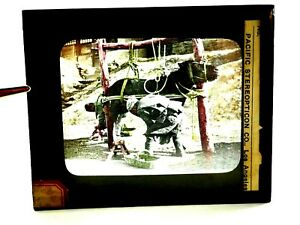Chinese Shoeing A Mule Photos of California and The West Magic Lantern Slide