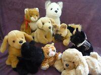 Soft Toys Husky Alsatian German Shepherd Scottish Terrier Puppy Dog Ginger Cat