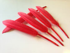 5 X 10-15cm Red Goose Feathers Art Craft Millinery Dream Catcher Party Cake