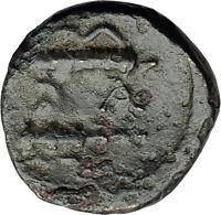ALEXANDER III the Great 325BC Macedonia Ancient Greek Coin HERCULES CLUB i62374