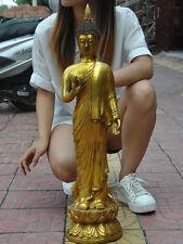 Old Tibet buddhism Fane bronze Gilt Thailand sakyamuni Shakyamuni buddha statue