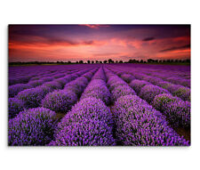 120x80cm Leinwandbild auf Keilrahmen Sonnenuntergang Lavendelfeld Landschaft