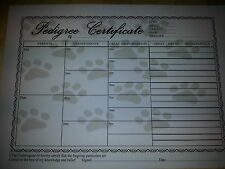 PEDIGREE PAPERS 5  (BLANK)  A4 SIZE 4GEN 100g