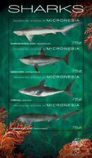 Micronesia- Sharks Stamp -  Sheet of 4 MNH