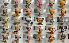 LPS Littlest petshop pet shop chien chat européen teckel colley cat dog rare