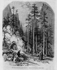 Stampa antica montagna Grande Chartreuse Francia 1860 Ancien Gravure Old Print