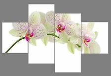 """White Orchid Floral Print Set 20"""" X 40""""+ Long 4 Panel Canvas Pictures Wall Art"""