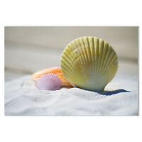 Beach Sea Shell Scenery Canvas Painting Poster Picture Wall Art Home Decoration