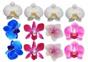Edible Cupcake Top- 12 ORCHID FLOWER decoration - Wafer/ Rice Paper or Icing