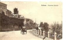 POLLENZA  -  Panorama Levante