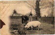 CPA Recherche de la Truffe en Périgord-L'Arrét (233911)
