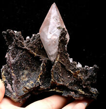 313g  NATURAL Calcite Grow with chalcopyrite Crystal Cluster Specimen/Hubei