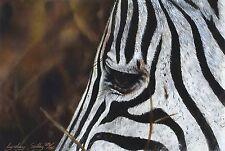 "LYNDSEY SELLEY ""Dramatic"" zebra savannah SIGNED LIM ED! SIZE:29cm x 37cm NEW"