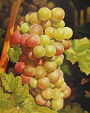 """Colorful grapes, Original artwork oil painting on canvas panel, fruits 16''x20"""""""