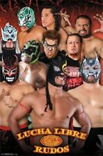 2013 CMLL LUCHA LIBRE RUDOS WRESTLING POSTER NEW 22x34 FREE SHIPPING