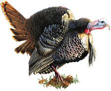WILD TURKEY CAR TRUCK MAGNET Large Rivers Edge Art NEW Wildlife Decal Gamebird