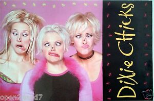 "DIXIE CHICKS ""FLY"" 2-SIDED U.S.PROMO POSTER-Flies On Their Noses & Album Artwork"