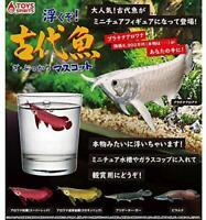 Toys spirits Float !! The Pukkari ancient fish mascot Gashapon 5 set mascot