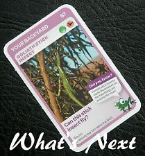 Woolworths   AUSSIE ANIMALS   Card 67/108 YOUR BACKYARD Goliath Stick Insect