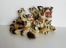 REAL FUR stuffed Tiger taxidermy bobble head figure & Fur Piece Mint Free Ship