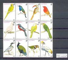 ENGLISH COLONY  GAMBIA  12  ST.     BIRDS  **  MNH VF