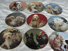 BEAUTIFUL ROYAL WORCESTER  Collectors Plate PET PORTRAITS