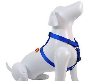 "NEW Saf-T-Paw Dog 5/8""W Nylon Harness Blue Small 12""-20"""