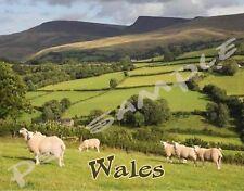 WALES - landscape - Travel Souvenir Flexible Fridge Magnet