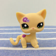 LPS 1962 Yellow Cat w/ Flower Littlest Pet Shop Green Eyes Short hair Kitty Toys