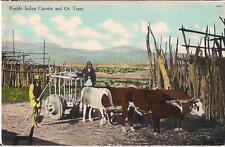 Native American Pueblo Indian Carretta & Ox Team Vintage Unused Postcard