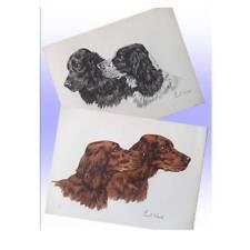 Cocker Spaniels & Irish Setters,Pair of Vintage Prints by Paul Wood